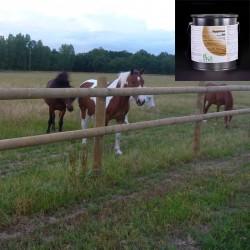 Lasure clôture pour chevaux...